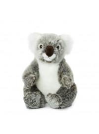 Koala 22cm
